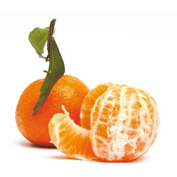 clementine_346_346_filled