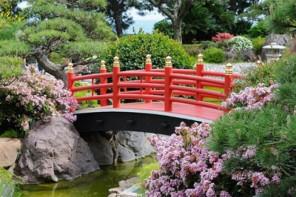 Kidimood Nippon ni mauvais …