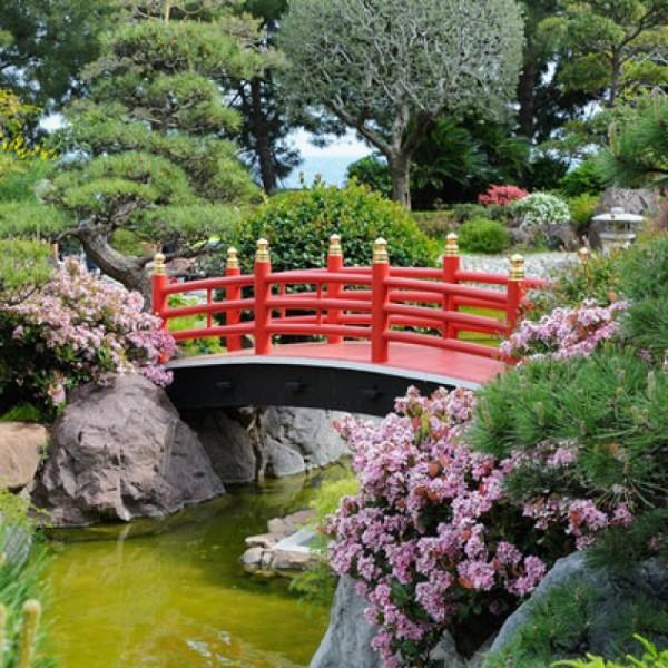jardin-zen-58952_w767h767c1cx356cy188